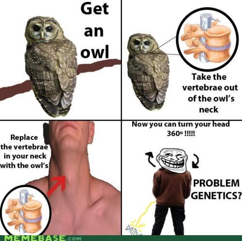 Troll Science: Owl Neck