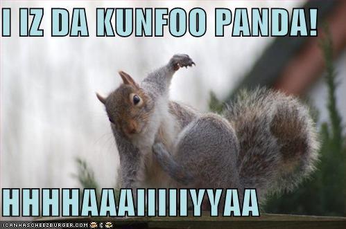 I IZ DA KUNFOO PANDA!  HHHHAAAIIIIIYYAA