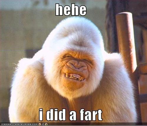 hehe  i did a fart