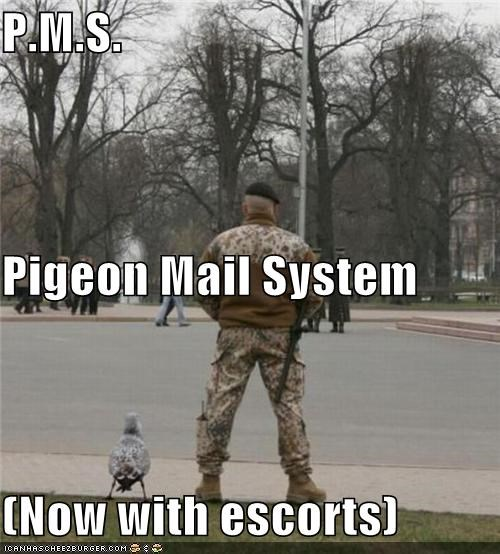 P.M.S. Pigeon Mail System (Now with escorts)