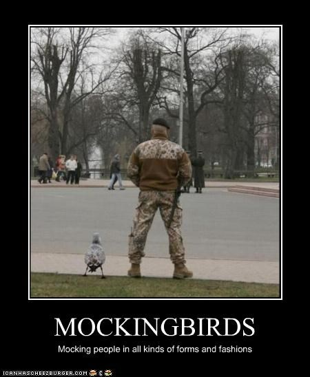 MOCKINGBIRDS