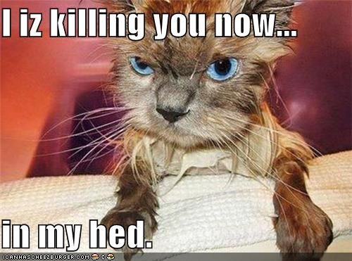 I iz killing you now...  in my hed.