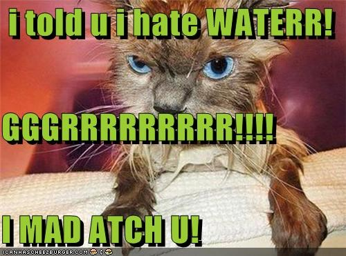 i told u i hate WATERR! GGGRRRRRRRRR!!!! I MAD ATCH U!