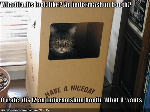 Whadda dis look like? An imformashun booth?  O wate, dis IZ an imformashun booth. What U wants.