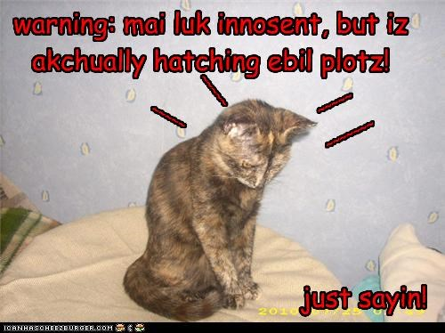 warning: mai luk innosent, but iz akchually hatching ebil plotz!