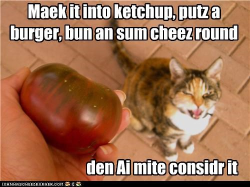 Maek it into ketchup, putz a burger, bun an sum cheez round it