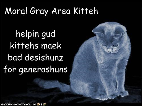Moral Gray Area Kitteh