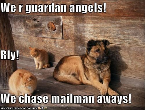 We r guardan angels!  Rly! We chase mailman aways!