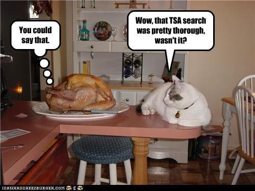 Wow, that TSA search was pretty thorough, wasn't it?
