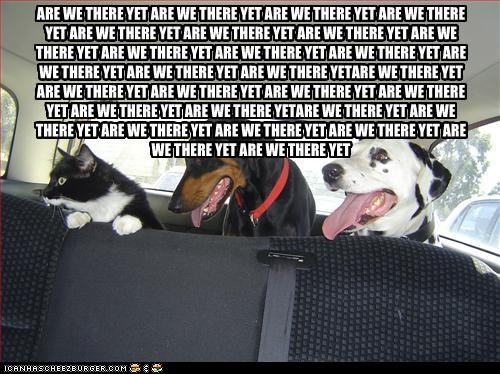 ad nauseam,are we there yet,asking,car,cat,dalmatian,doberman pinscher,driving,Hall of Fame,question,repeatedly,repetition
