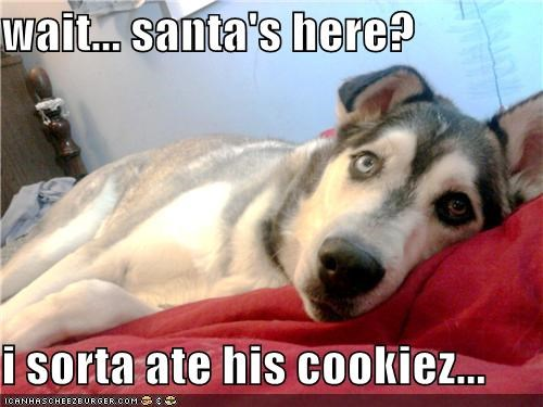 wait... santa's here?  i sorta ate his cookiez...