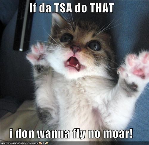 If da TSA do THAT  i don wanna fly no moar!
