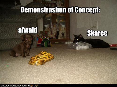 Demonstrashun of Concept: