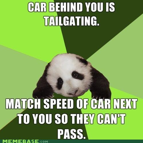animemes,car,driving,Memes,panda,passive aggressive,road