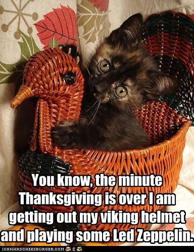You know, the minute Thanksgiving is over I am getting out my viking helmet and playing some Led Zeppelin.