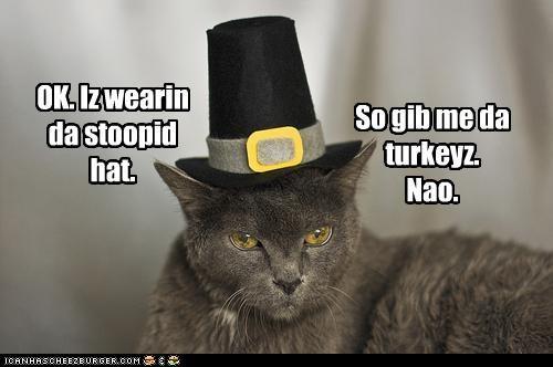 OK. Iz wearin da stoopid hat.