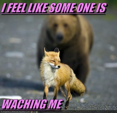 I FEEL LIKE SOME ONE IS   WACHING ME