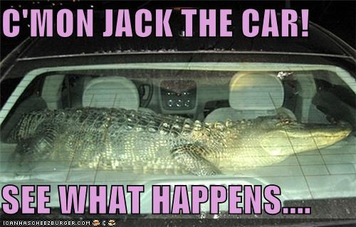 C'MON JACK THE CAR!  SEE WHAT HAPPENS....