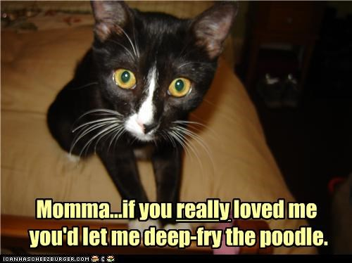 Momma...if you really loved me  you'd let me deep-fry the poodle.