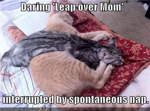 Daring 'Leap over Mom'    interrupted by spontaneous nap.