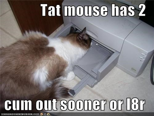 Tat mouse has 2  cum out sooner or l8r