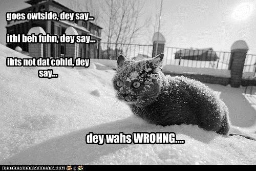 dey wahs WROHNG....