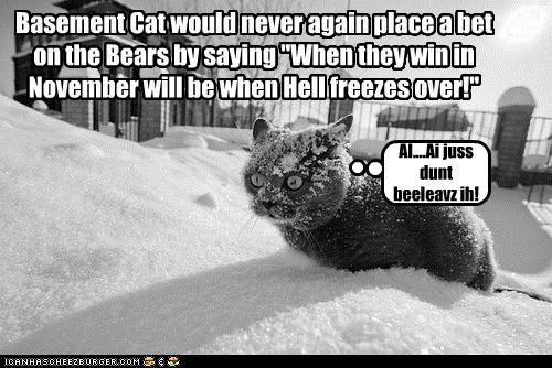 """Basement Cat would never again place a bet on the Bears by saying """"When they win in November will be when Hell freezes over!"""""""