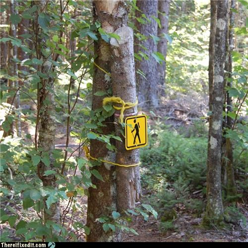 If A Sign Falls in the Forest...