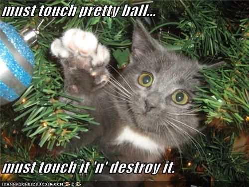 must touch pretty ball...  must touch it 'n' destroy it.
