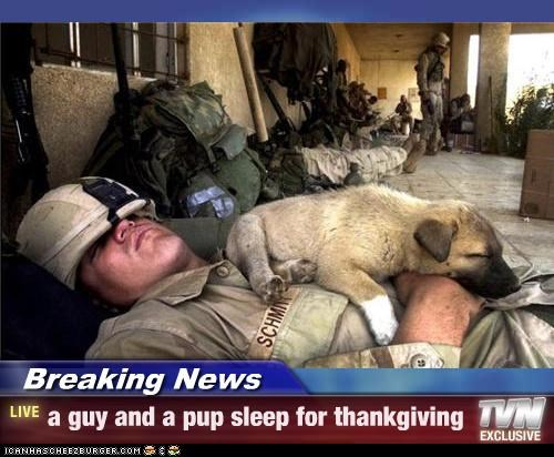 Breaking News - a guy and a pup sleep for thankgiving