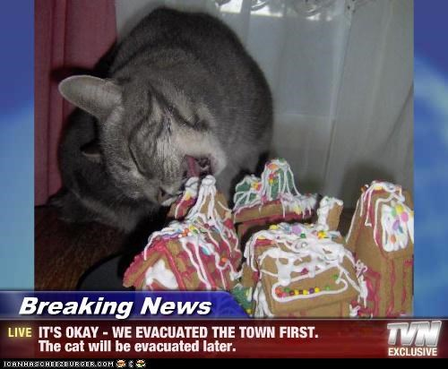 Breaking News - IT'S OKAY - WE EVACUATED THE TOWN FIRST. The cat will be evacuated later.