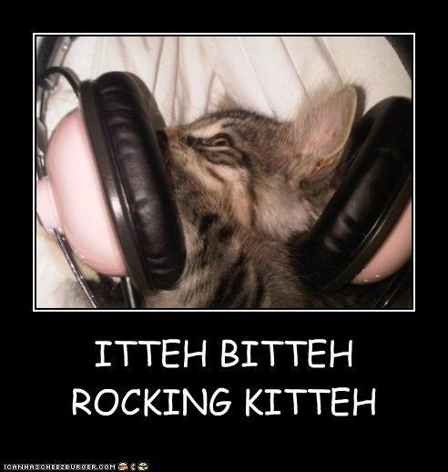 ITTEH BITTEH ROCKING KITTEH