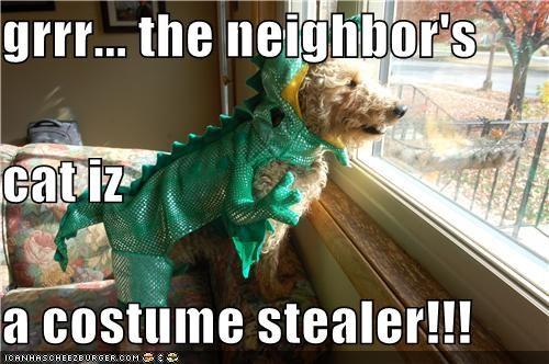grrr... the neighbor's cat iz  a costume stealer!!!