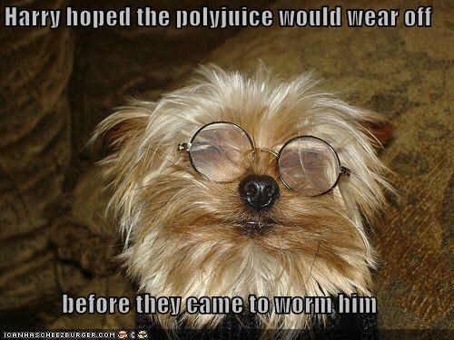 Harry hoped the polyjuice would wear off   before they came to worm him