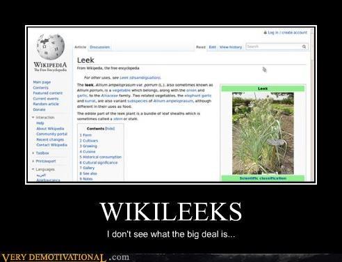 food,freedom,leeks,lol,puns,terrorists,wikileaks,wikipedia
