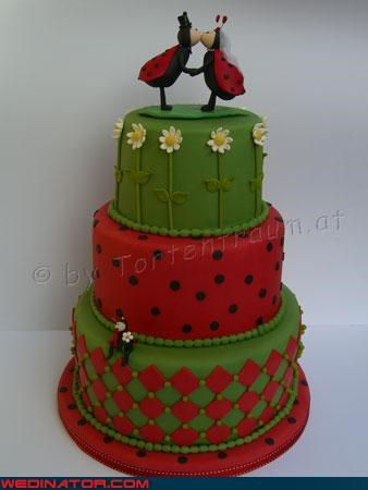 Is the Mini Ladybug on the Bottom Tier Their Witness?