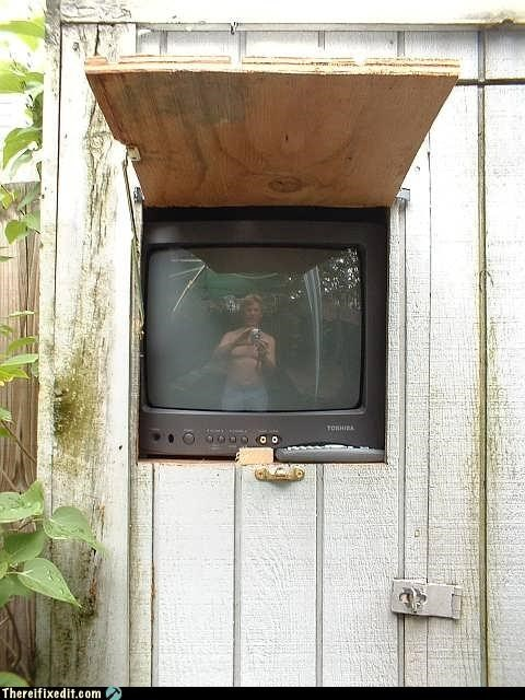 clever,lazy,television