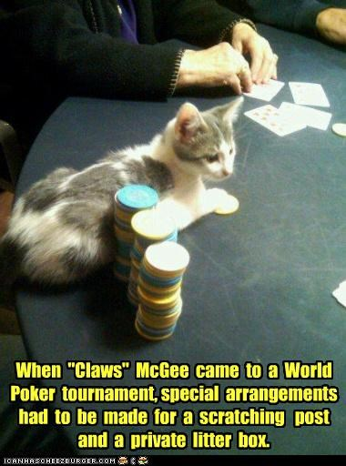 "When  ""Claws""  McGee  came  to  a  World  Poker  tournament, special  arrangements  had  to  be  made  for  a  scratching   post  and  a  private  litter  box."