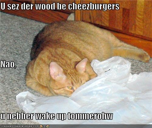 U sez der wood be cheezburgers Nao, u nebber wake up tommerohw