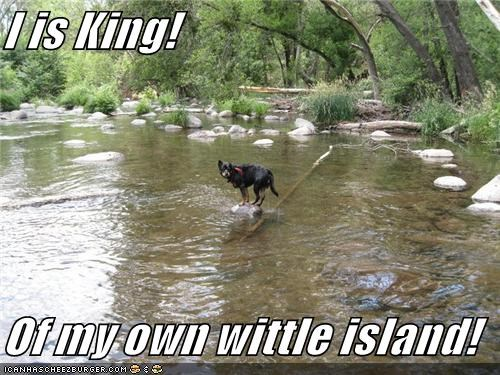 I is King!  Of my own wittle island!