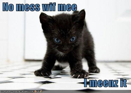 No mess wif mee  I meenz it