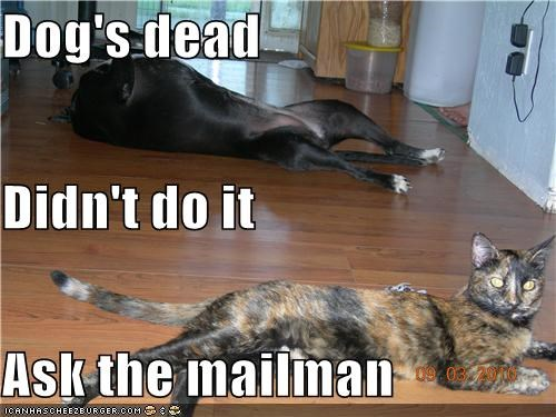 Dog's dead Didn't do it Ask the mailman