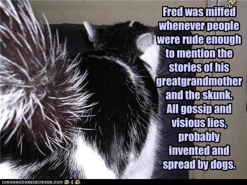 Fred was miffed whenever people were rude enough to mention the stories of his greatgrandmother and the skunk. All gossip and visious lies, probably  invented and spread by dogs.