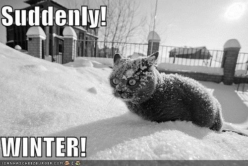 Suddenly!  WINTER!