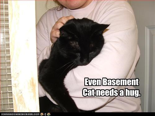 Even Basement Cat needs a hug.