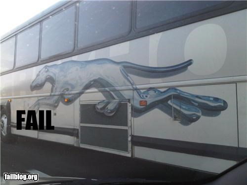 Hung Greyhound FAIL