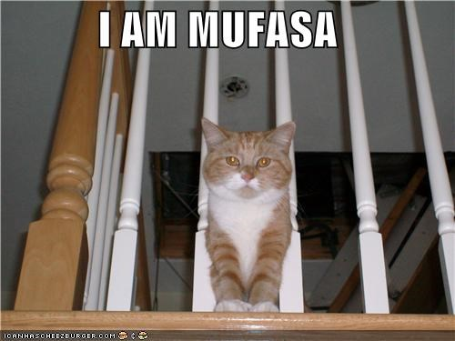 I AM MUFASA