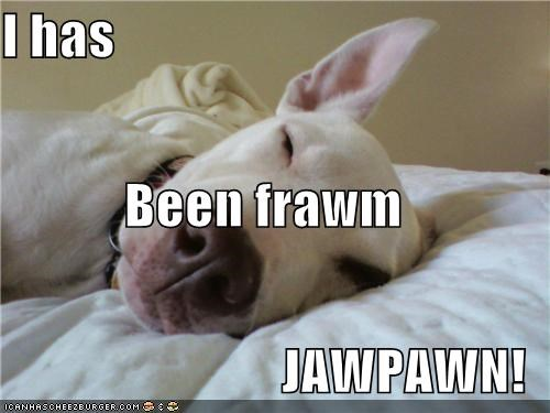 I has Been frawm JAWPAWN!