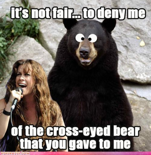 alanis morissette,animal,bear,funny,Hall of Fame,literal