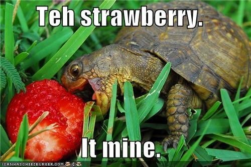 Teh strawberry.   It mine.
